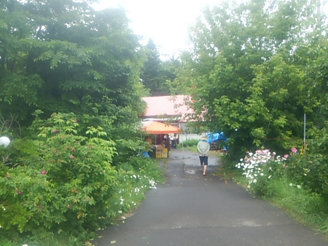 入口から見たといの市会場。緑が生い茂っています!