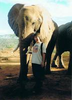 地球ドラマチック・選「ゾウのサイティは1年生  野生に戻るための学校」